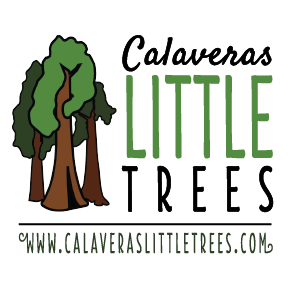 Logo for Calaveras Little Trees Delivery