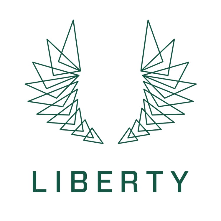 Logo for Liberty - Norristown