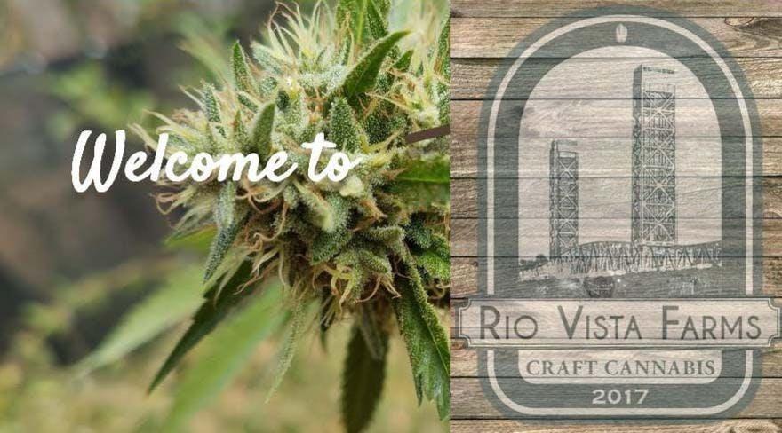 Rio Vista Farms Menu Leafly