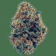 Grizzly Farms | Crispy Chem Cookies