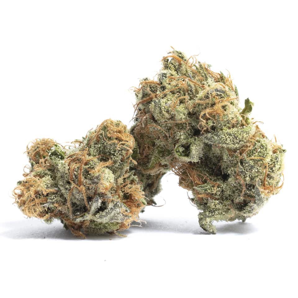 Cheese Quake Cannabis Strain Information — Leafly