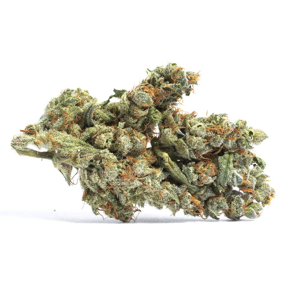 Blueberry Cookies Cannabis Strain Information — Leafly