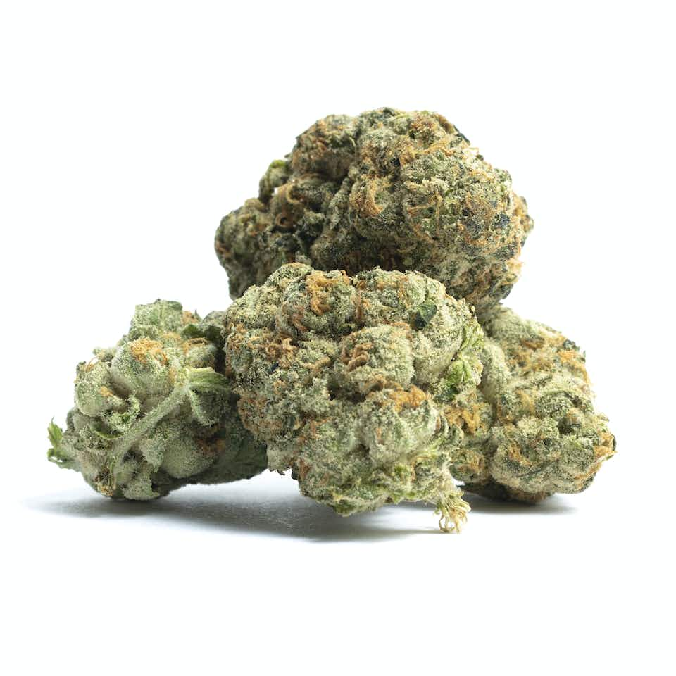 Thin Mint GSC Cannabis Strain Information — Leafly