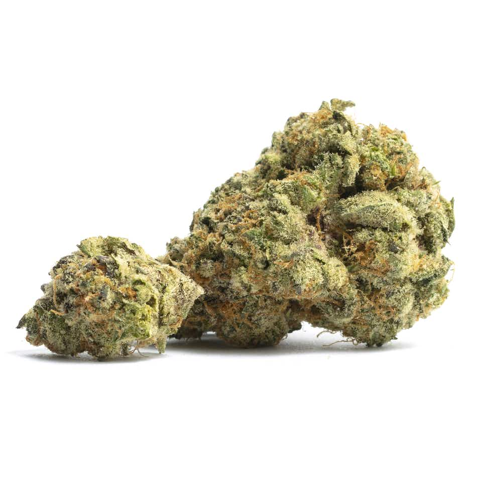 Orange Cookies Cannabis Strain Information — Leafly