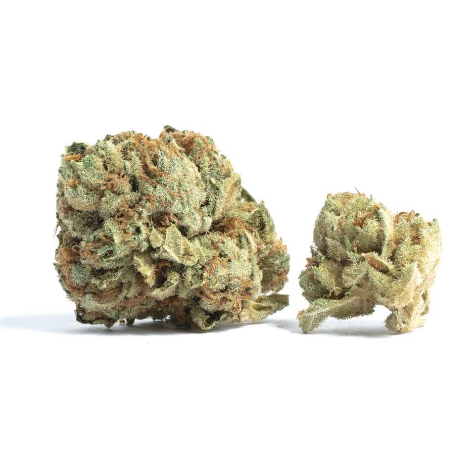 Tahoe OG Kush Cannabis Strain Information — Leafly