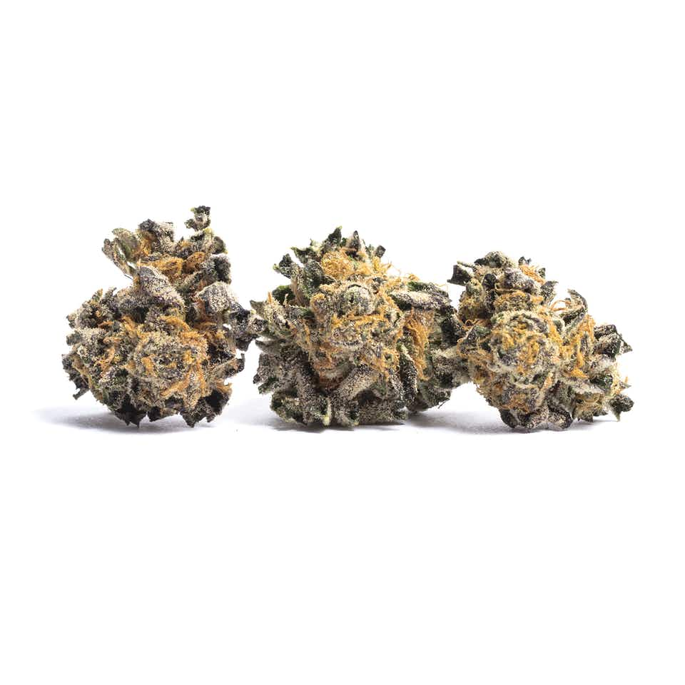 Animal Cookies Cannabis Strain Information — Leafly