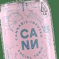 CANN Social Tonic | Grapefruit Rosemary