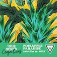 Pineapple Paradise 2pck 100mg
