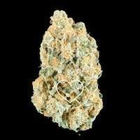 Huckleberry Kush #2